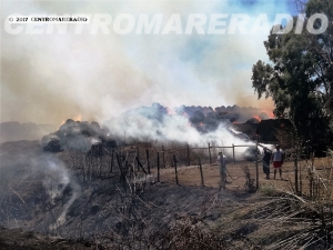 Ordinanza anti incendi a Ladispoli
